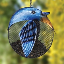 Blue Jay Full Belly Birdfeeder