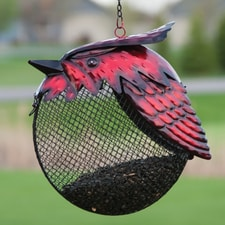 Cardinal Full Belly Birdfeeder