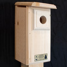 Eastern Bluebird Nesting Box