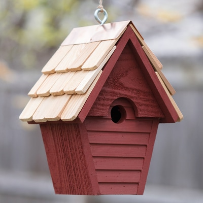 Cute & Cozy Nesting Box