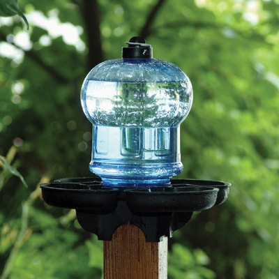 Bird Waterer and Bath