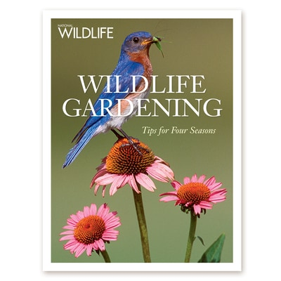 Wildlife Gardening Softcover Book<br />Tips for Four Seasons