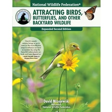 LEARN MORE<br />Attracting Birds, Butterflies & Backyard Wildlife
