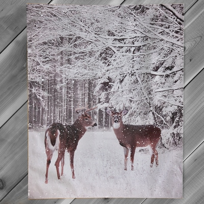 Deer LED-Lighted Canvas