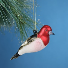 Red Headed Woodpecker Glass Ornament