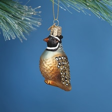 Partridge Glass Ornament