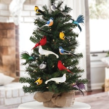 Songbirds Ornament Set