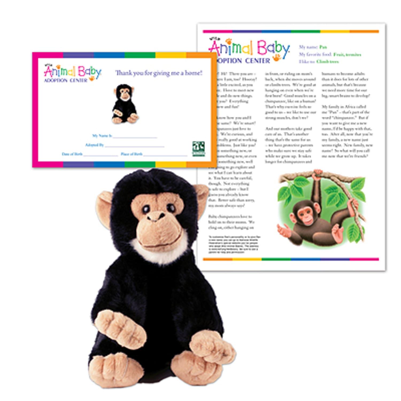 Adopt a Baby Chimpanzee | Shop NWF