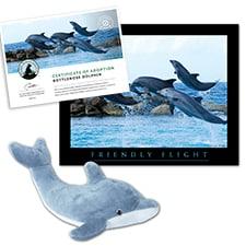 Adopt a Bottlenose Dolphin