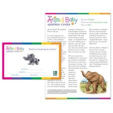 Adopt a Baby Elephant