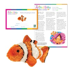 Adopt a Baby Clownfish
