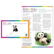 Adopt a Baby Panda