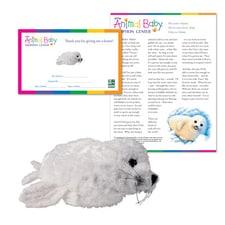 Adopt a Baby Seal
