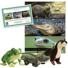 Wetland Wildlife Collection