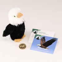 Bald Eagle Collector Coin