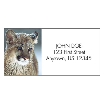 Watchful Eyes Address Labels