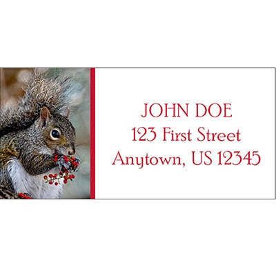 Squirrel With Berries Address Labels