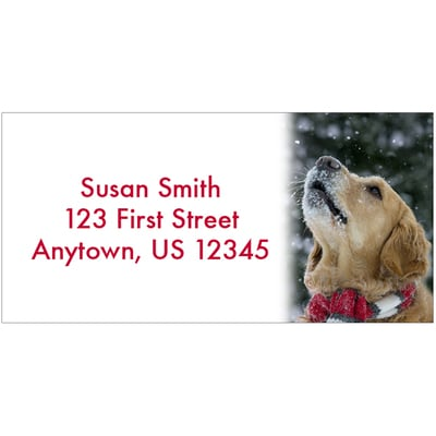 Let it Snow Address Labels