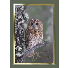 Favorite Perch Card