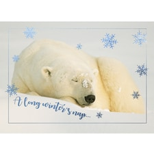 Winter's Nap Card