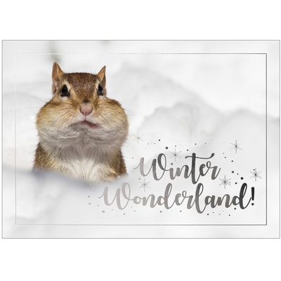Snow Munk Card