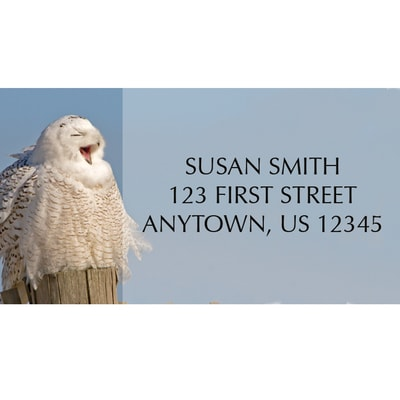 Snowy Owl Wonderland Address Label