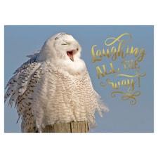 Snowy Owl Wonderland Card