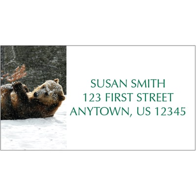 Baby Grizzly Address Label
