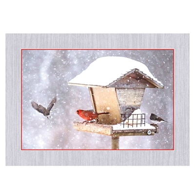 Cardinals on Birdfeeder in Snow Card
