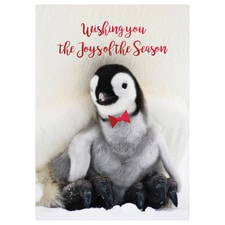 Penguin Greetings Card