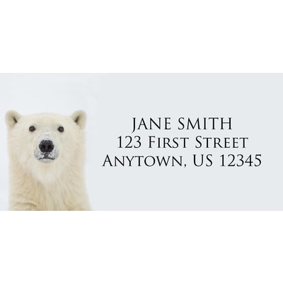 Yearling Polar Bear Address Label