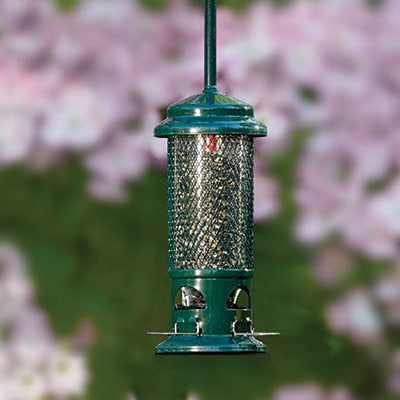 Squirrel Buster Feeder
