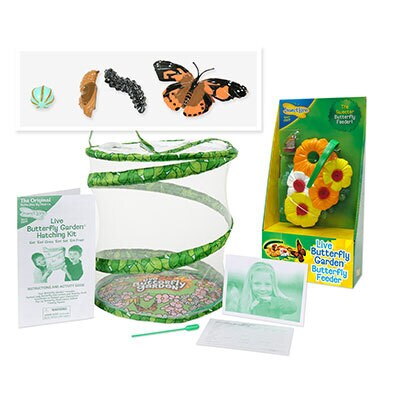 Ultimate Butterfly Kit for Kids