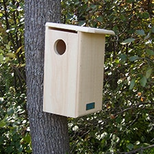 Habitat Squirrel House