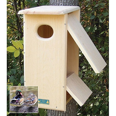 Wood Duck / Hooded Merganser Nesting Box