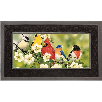 Backyard Birds Mat Set