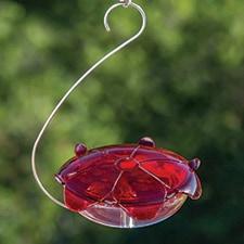 Ruby Sipper Hummingbird Feeder