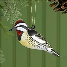 Yellow Bellied Sapsucker Ornament