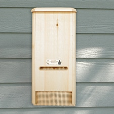 BATchelor Pad Bat House