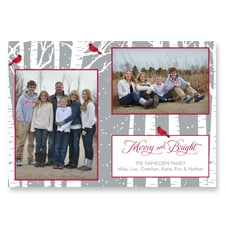 Merry and Bright Cardinals Photo Card