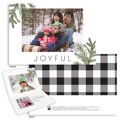 simple evergreen folded photo card shop nwf