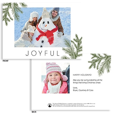 simple evergreen flat photo card shop nwf