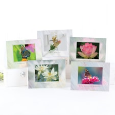Heartfelt Sympathy Card Assortment
