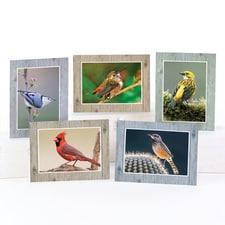 Pretty Bird Note Card Assortment