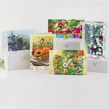 Wild Colors Birthday Card Assortment