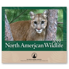 NWF 2019 Wildlife Wall Calendar