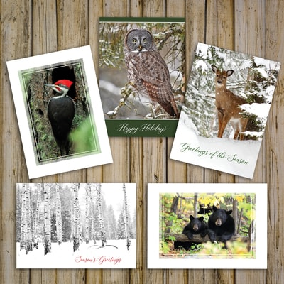 Trees for Wildlife Card Assortment
