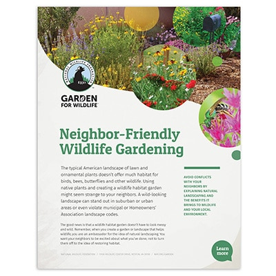 Neighbor-Friendly Wildlife Gardening Tip Sheet