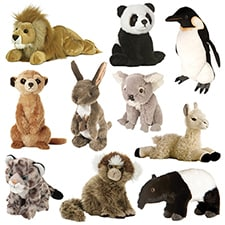 Ultimate Wildlife Around the World Collection
