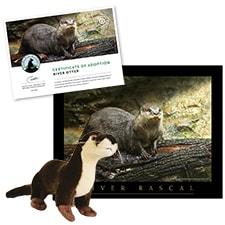 Adopt a River Otter
